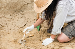 What Skills should an Archaeologist Have