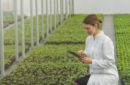 What Skills should an Agricultural Engineer Have